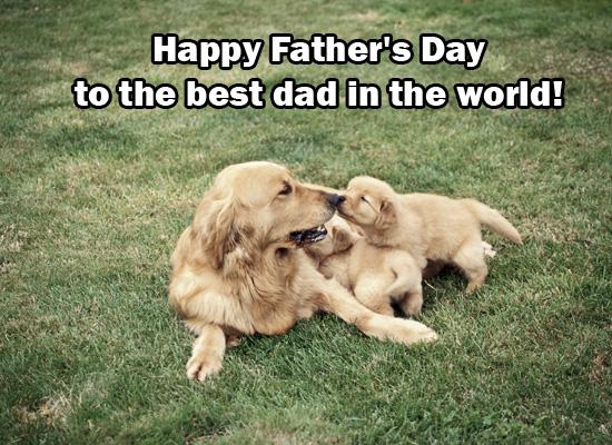 FathersDayPuppies