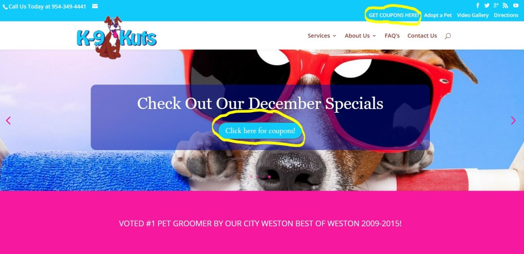 k-9 kuts new home page