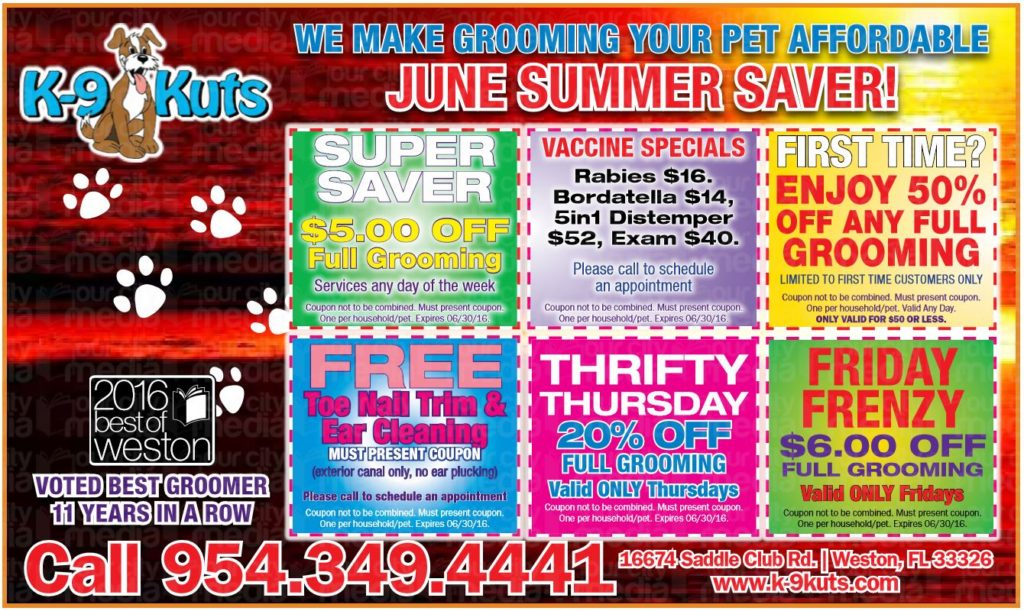 k-9-kuts-affordable-weston-dog-groomer-june-2016-coupons-special-prices